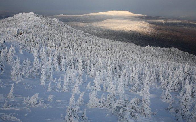 Зима в Национальном парке Таганай | ФОТО НОВОСТИ